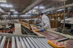 Trabajadores de mujer musulmanes que trabajan en una planta de carne del pollo Fotografía de archivo libre de regalías
