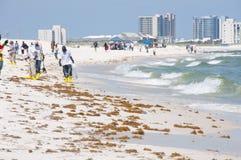 Trabajadores del derramamiento de petróleo que limpian la playa Imágenes de archivo libres de regalías