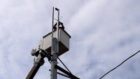 Trabajadores eléctricos en Telehandler con el cubo que instala los alambres de alta tensión almacen de video
