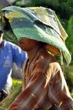 Trabajadores en arroz de la cosecha Fotografía de archivo