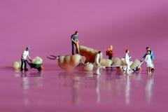 Trabajadores miniatura que realizan procedimientos dentales Oficina dental AR Imagen de archivo