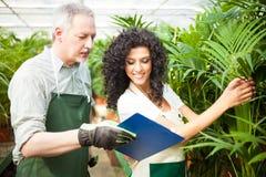 Trabajadores que examinan las plantas Fotos de archivo libres de regalías