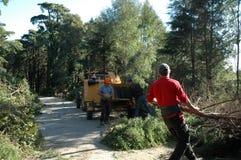 Trabajadores que limpian el bosque - máquina de pulir - planeta Foto de archivo