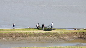Trabajadores que tiran de la red con los pescados almacen de metraje de vídeo