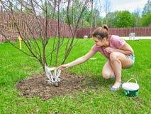 Trabajo adolescente en el jardín Imagen de archivo