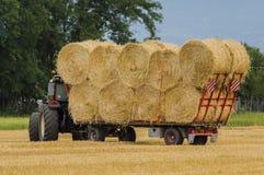 Trabajo agrícola Foto de archivo libre de regalías