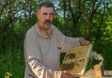 Trabajo campesino ucraniano en propia yarda de la abeja Imágenes de archivo libres de regalías
