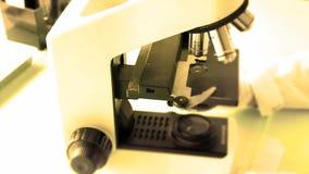 Trabajo con un microscopio Microscopio del laboratorio Determinación del microscopio almacen de metraje de vídeo