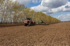 Trabajo cosechando la cosechadora en el campo del trigo imagen de archivo