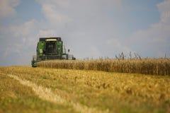Trabajo cosechando la cosechadora en el campo del trigo con el foco selectivo Foto de archivo