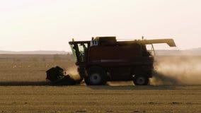 Trabajo cosechando la cosechadora en el campo del trigo en la puesta del sol almacen de metraje de vídeo