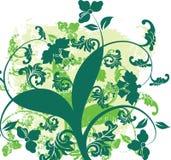 Trabajo de arte multicolor del diseño floral Fotografía de archivo libre de regalías