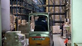 Trabajo de carretillas elevadoras en las plataformas cargadas con las cajas de cartón en los estantes en un almacén moderno almacen de video