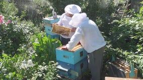 Trabajo de dos apicultores en el colmenar Imágenes de archivo libres de regalías