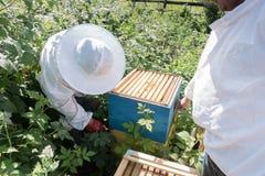 Trabajo de dos apicultores en el colmenar Imagen de archivo libre de regalías
