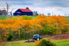 Trabajo de la granja Fotografía de archivo libre de regalías