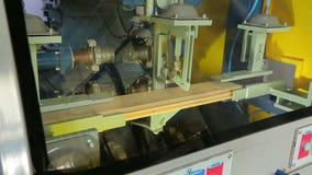 Trabajo de la máquina de la carpintería en la empresa de la carpintería almacen de video