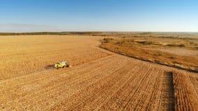 Trabajo de las máquinas segadores sobre campo de maíz almacen de metraje de vídeo