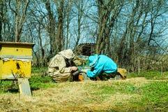 Trabajo de tres apicultores sobre un colmenar en la colmena Día asoleado Fotografía de archivo libre de regalías