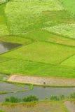 Trabajo del granjero en Guizhou China Fotos de archivo libres de regalías