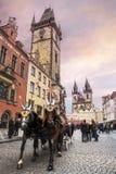 Trabajo del guía turístico en Praga Fotografía de archivo