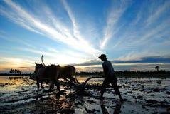 Trabajo en Chau doc. fotos de archivo
