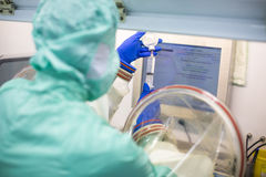 Trabajo en el ambiente limpio estupendo del laboratorio Imagen de archivo libre de regalías