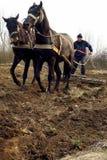 Trabajo en el terreno de la primavera en zonas rurales del Transcarpathia Fotos de archivo