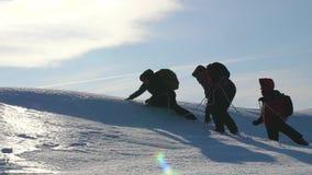 Trabajo en equipo de los viajeros que caminan a través de la nieve Superar dificultades tres alpinistas suben la cuerda en la mon metrajes