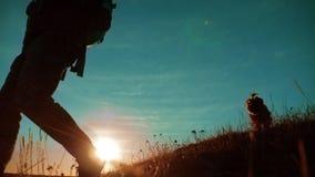 Trabajo en equipo Dos caminantes que disfrutan de la salida del sol que camina del top de una montaña y de un perro vídeo de la c almacen de metraje de vídeo