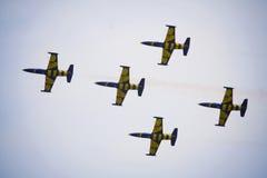 Trabajo en equipo en el cielo Abejas bálticas en la acción Imagenes de archivo