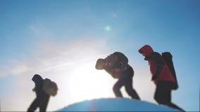 Trabajo en equipo los caminantes turísticos del equipo del grupo dan subida al top de la montaña El invierno del triunfo del éxit almacen de metraje de vídeo