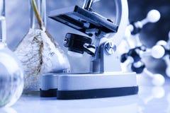 Trabajo en un laboratorio y plantas Imágenes de archivo libres de regalías