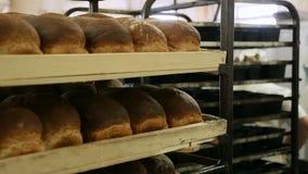 Trabajo en una panadería metrajes