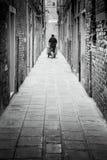 Trabajo en Venecia imágenes de archivo libres de regalías