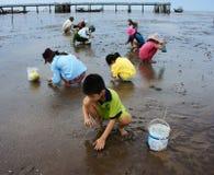Trabajo infantil en la playa de Vietnam Imagen de archivo libre de regalías