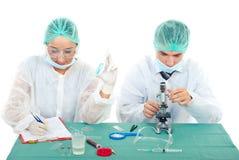 Trabajo joven de los científicos en laboratorio Imagen de archivo libre de regalías