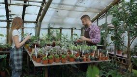 Trabajo joven de los floristas de los pares en centro de jardinería Flores cheking y mujer del hombre atractivo que usa la tablet almacen de video