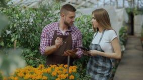Trabajo joven de los pares en centro de jardinería Flores cheking y mujer del hombre atractivo que usa la tableta durante el trab almacen de video