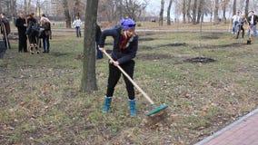 Trabajo manual. Limpieza en parque de la ciudad