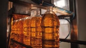 Trabajo sobre el transportador para la producción de aceite de girasol Mecanismos del movimiento almacen de metraje de vídeo