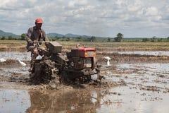 Trabajo srilanqués del hombre sobre campo del arroz Imagen de archivo libre de regalías