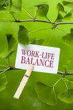 Trabajo-Vida-balanza foto de archivo libre de regalías