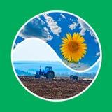 Trabajo y cosecha Foto de archivo libre de regalías