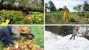 Trabajos estacionales del trabajo de la mujer en jardín La cantidad acorta el collage almacen de video