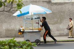 Trabajos infantiles brasileños Imagenes de archivo