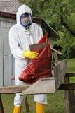 Trabalhador com eliminação do asbesto da embalagem da máscara Fotografia de Stock