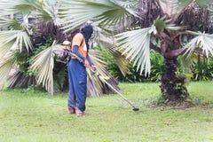 Trabalhador com grama do corte do vestuário de proteção com cortador de grama Imagem de Stock Royalty Free