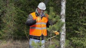 Trabalhador com o machete que trabalha na floresta video estoque