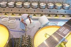 Trabalhador da fábrica da fabricação de queijos que prepara o equipamento necessário fotografia de stock